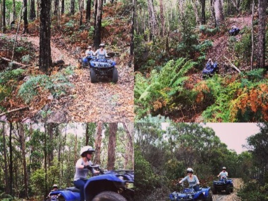 Like no other Quad Biking experience in Tasmania this 2 hour guided adventure will take you through the very terrain they were made for - sub-alpine bush, farmland and mountainous terrain, right in the heart of Cradle Country, just 10 minutes from the Town of Sheffield. 